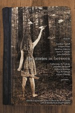 The Stories in Between: A Between Books Anthology - Greg Schauer, Jeanne B. Benzel, W.H. Horner, Maria V. Snyder, John Passarella, Gregory Frost, Catherynne M. Valente, C.J. Henderson, Jonathan Carroll, Mike McPhail, Danielle Ackley-McPhail, Patrick Thomas, Lawrence M. Schoen, Lawrence C. Connolly, Don Bethman, Jon McGor