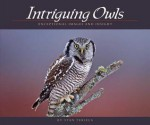 Intriguing Owls: Extraordinary Images and Insight - Stan Tekiela