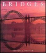 Bridges - Steven A. Ostrow, Tony Burgess