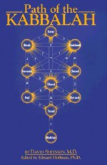 Path of the Kabbalah (Patterns of World Spirituality/Paths) - David Sheinkin