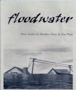 Floodwater: Three Stories (Holiday Chapbook Series #2) - Heather Shaw, Tim Pratt, Richard Doyle