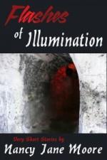 Flashes of Illumination - Nancy Jane Moore