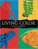 Living Color - Steve Jenkins