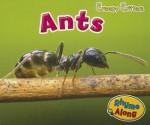Ants - Rebecca Rissman