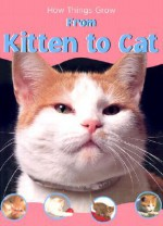 From Kitten To Cat - Sally Morgan