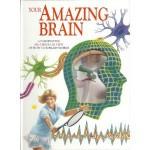 Your Amazing Brain - Jenny Bryan