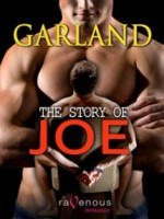 The Story of Joe - Garland
