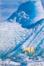 Wildlife Photographer of the Year Portfolio 14 - BBC Books