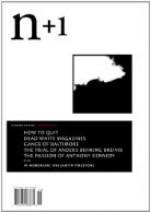 n+1 Issue 15: Amnesty - n+1, Julia Gronnevet, Nikil Saval, Kristen Dombek, Jeremy Kessler, Hannah Tennant-Moore, Anand Vaidya, Benjamin Kunkel, Mikhail Shishkin, Marian Schwartz, Lawrence Jackson