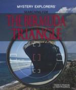Searching for the Bermuda Triangle - Vivian E. Shumway, Aaron Rosenberg