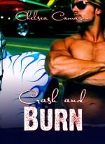 Crash and Burn - Chelsea Camaron