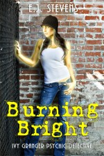Burning Bright - E.J. Stevens