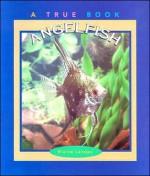 Angelfish - Elaine Landau