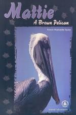 Mattie: A Brown Pelican - Bonnie Highsmith Taylor