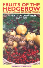 Fruits Of The Hedgerow And Unusual Garden Fruits - Popescu Charlotte