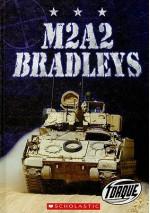 M2A2 Bradleys - Jack David