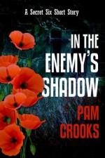 In the Enemy's Shadow (Secret Six) - Pam Crooks