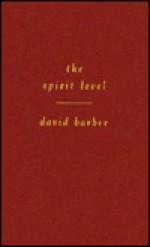The Spirit Level - David Barber