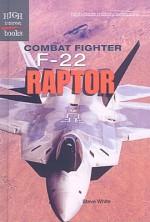 Combat Fighter F-22 Raptor - Steve White