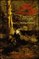 Bloody Promenade: Reflections On A Civil War Battle - Stephen Cushman