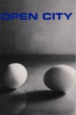 Open City - Mary Gaitskill, Jeff Koons