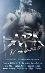 Dark & Dangerous - A Boxed Set of possessive alphas, sexy bad-boys, and savage heroes - Clarissa Wild, Lili Saint Germain, Nashoda Rose, Vanessa Waltz, Gemma James, Skye Warren, Lily White, Jaden Wilkes, Skye Callahan