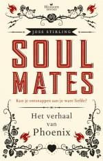 Het verhaal van Phoenix - Merel Leene, Joss Stirling