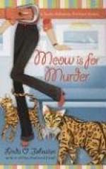 Meow is for Murder - Linda O. Johnston