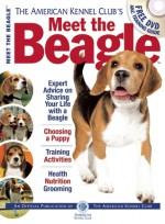 Meet the Beagle - American Kennel Club