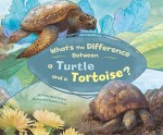 What's The Difference Between A Turtle And A Tortoise? - Trisha Speed Shaskan, Debra Bandelin