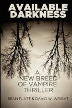 Available Darkness - Sean Platt, David W. Wright