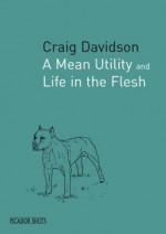 Picador Shots A Mean Utility (Picador Shots) - Craig Davidson