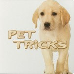 Pet Tricks (Rourke Board Books) - Meg Greve