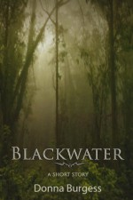 Blackwater: A Tale of Southern Horror - Donna Burgess