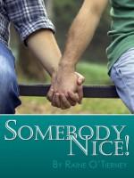 Somebody Nice! - Raine O'Tierney