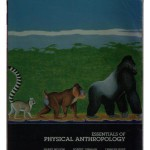Essentials of Physical Anthrop Ology - Harry Nelson, Lynn Kilgore, Robert Jurmain