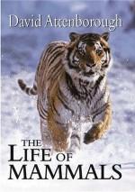 The Life of Mammals - David Attenborough