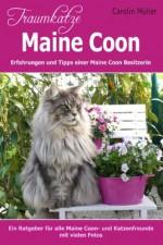 Traumkatze Maine Coon - Erfahrungen und Tipps einer Maine Coon Besitzerin (German Edition) - Carolin Müller