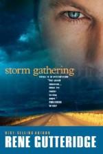 Storm Gathering (The Storm Series #2) - Rene Gutteridge