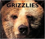 Grizzlies - Mary Ann McDonald