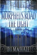 The Light - D.J. MacHale