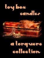 Toy Box: Candles - M. Rode, Sean Michael, Alexa Snow, Elle Parker