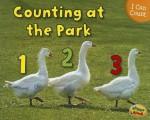 Counting at the Park - Rebecca Rissman