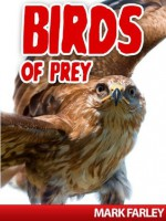 Birds of Prey - Mark Farley