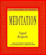 Meditation - Sogyal Rinpoche, Patrick Gaffney, Andrew Harvey