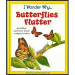 I Wonder Why...Butterflies Flutter and Other Questions About Creepy-Crawlies - Amanda O'Neill, Tony Kenyon, Stephen T. Holmes, Alan Male, Nicki Palin, Maurice Pledger, David Wright, Chris Forsey, Adrian Lascom