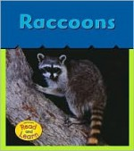 Raccoons - Patricia Whitehouse
