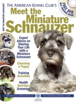 Meet the Miniature Schnauzer - American Kennel Club