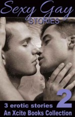 Sexy Gay Stories - Volume Two - Josephine Myles, Landon Dixon, J. Manx