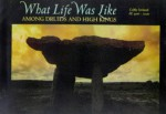 What Life Was Like Among Druids and High Kings: Celtic Ireland, AD 400-1200 - Time-Life Books